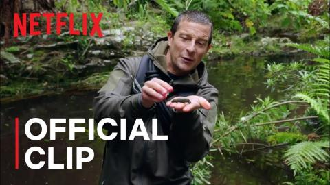 A Leech Latches on to Bear Grylls | Animals on the Loose: A You vs WIld Movie | Netflix