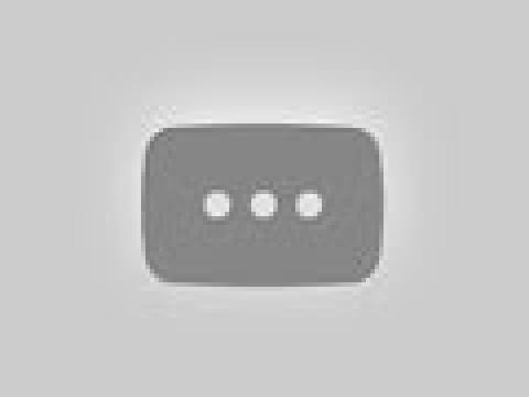 Wild District | Official Trailer [HD] | Netflix