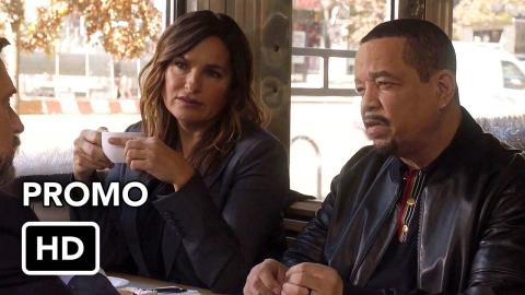 Law and Order SVU 22x04 Promo (HD)
